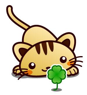 Clover Cat